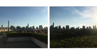nyc__0016_layer-235